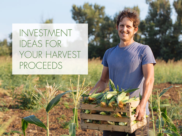 Farmers: Consider investment options for your harvest proceeds